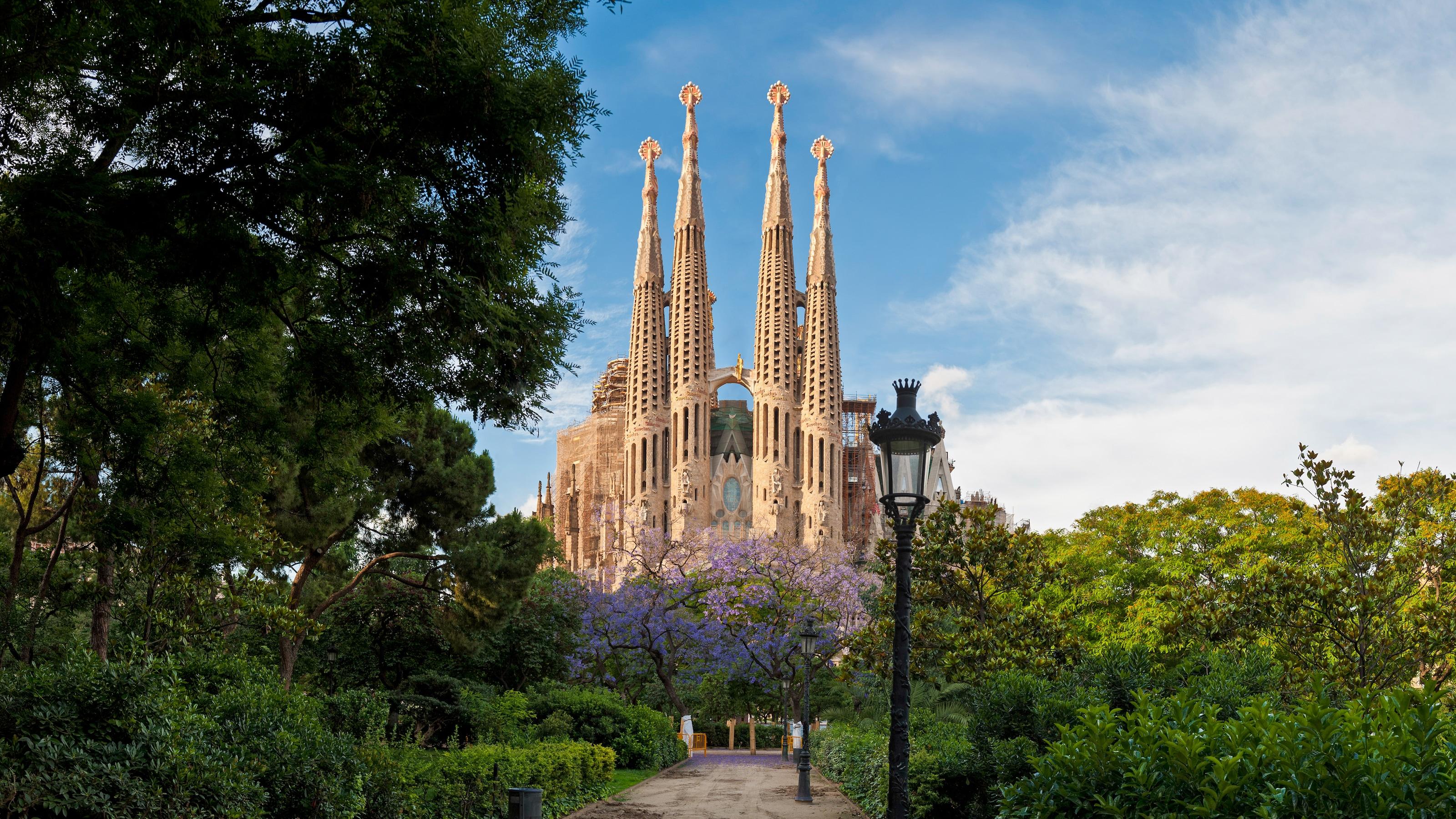 Os pináculos adornados da Catedral de Barcelona se destacam no final do caminho ladeado pela vegetação exuberante.