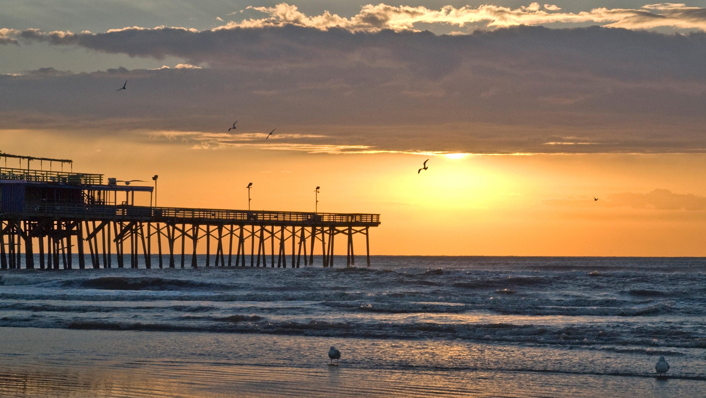 Perfil de aves marinhas e um píer com o brilhante pôr do sol de Galveston, no Texas, como pano de fundo.