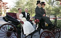 A bride and groom in a horse drawn carriage